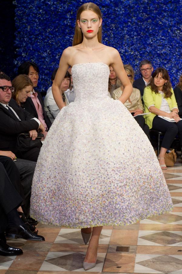 C.Dior Fall 2012 CTR