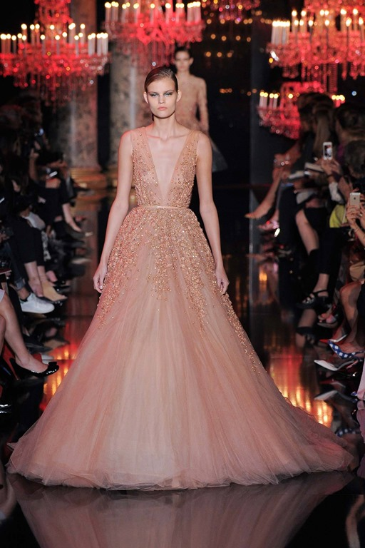 2014 Fall Couture Elie Saab